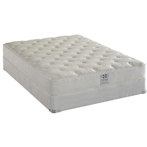 Sealy Comfort Series Avery Harbor Queen Firm Latex Mattress Set