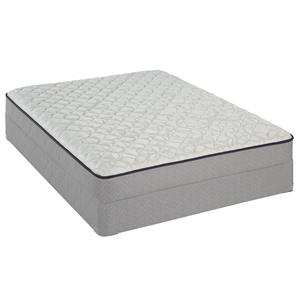Sealy Wallflower Queen Firm Mattress Set