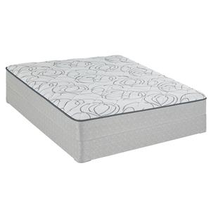 Sealy Sealy Brand Charwood Queen Plush Mattress Low Profile Set