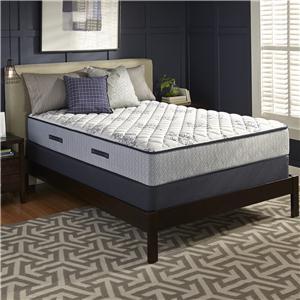 Sealy Level 6  Queen Firm Mattress, Low Profile Set