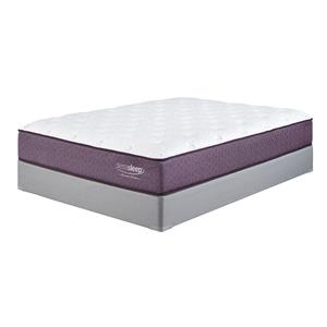 Sierra Sleep Limited Edition Queen Plush Mattress