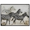 Signature Design by Ashley Wall Art Breeda Black/White Zebra Wall Art - Item Number: A8000107