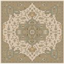 Surya Rugs Caesar 4' Square - Item Number: CAE1143-4SQ