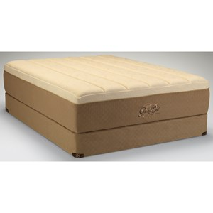 Tempur-Pedic® The GrandBed Queen Medium-Soft Mattress Set, HP