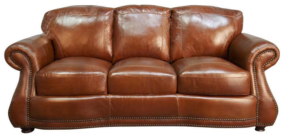 Rhodas Rhodas 100% Top Grain Leather Sofa by USA Premium Leather at Morris Home
