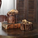 Uttermost Accessories Chameleon Boxes (Set of 2)