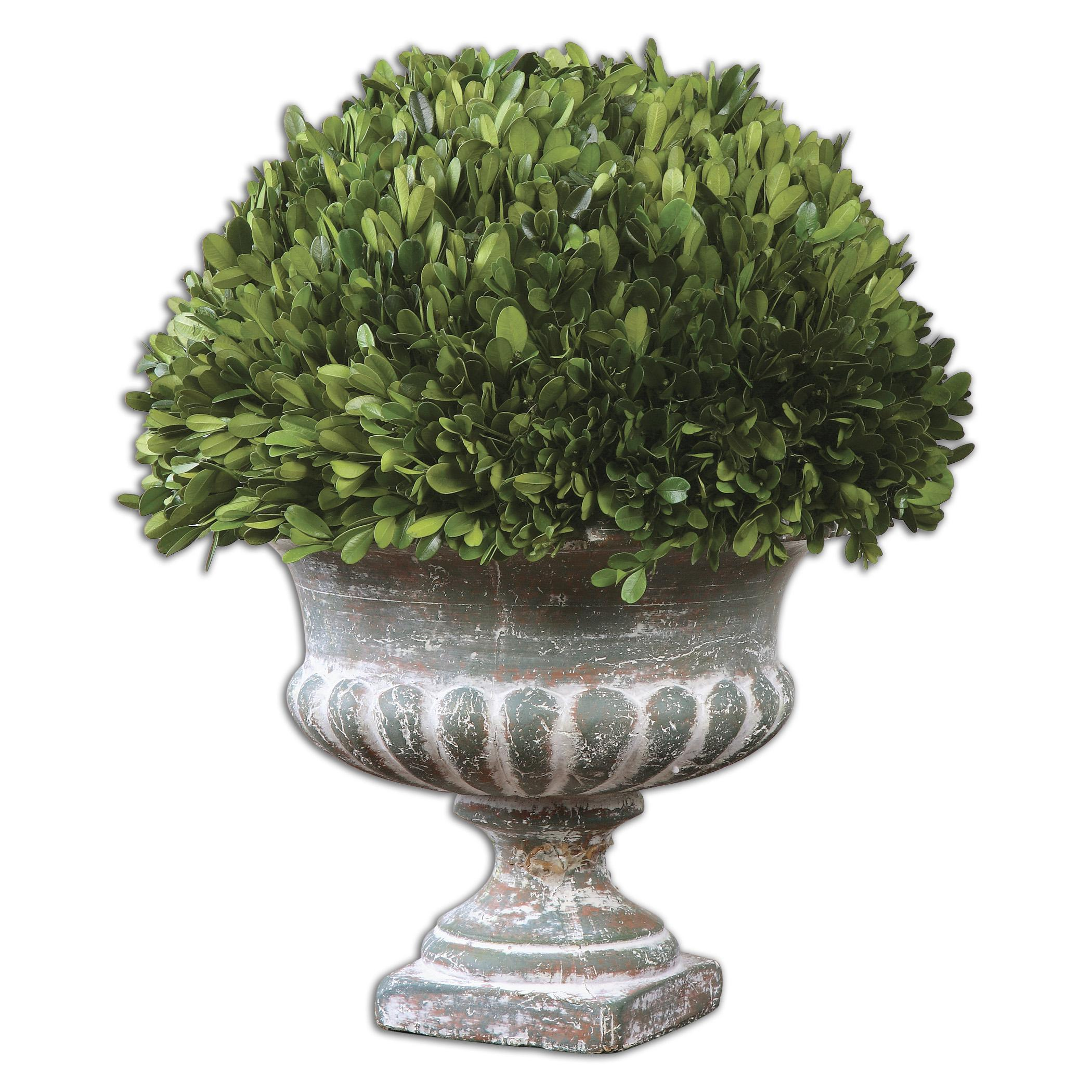 Uttermost Accessories Preserved Boxwood Garden Urn - Item Number: 60113