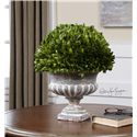 Uttermost Accessories Preserved Boxwood Garden Urn