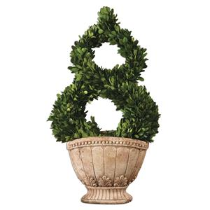 Uttermost Accessories Estate Trellis Preserved Boxwood