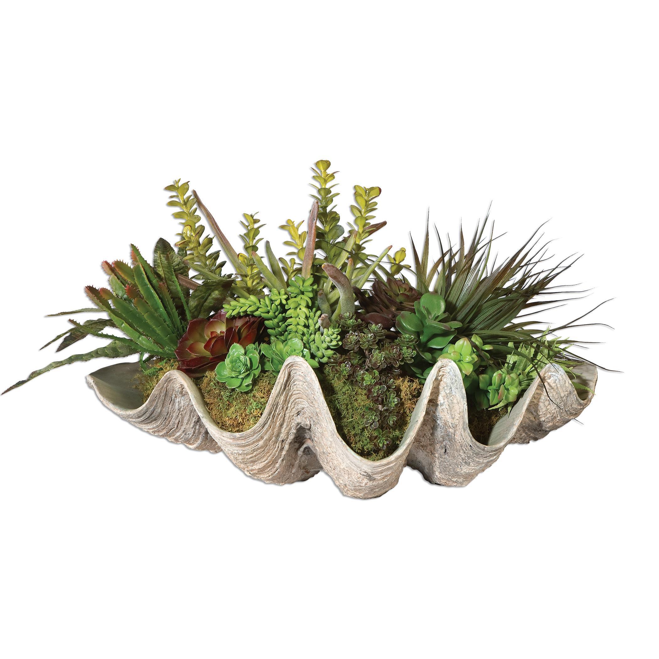 Uttermost Accessories Sea Coast Succulents - Item Number: 60116