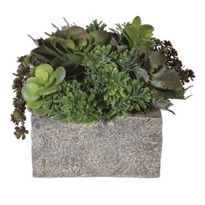 Uttermost Accessories Black Rock Desert Succulents