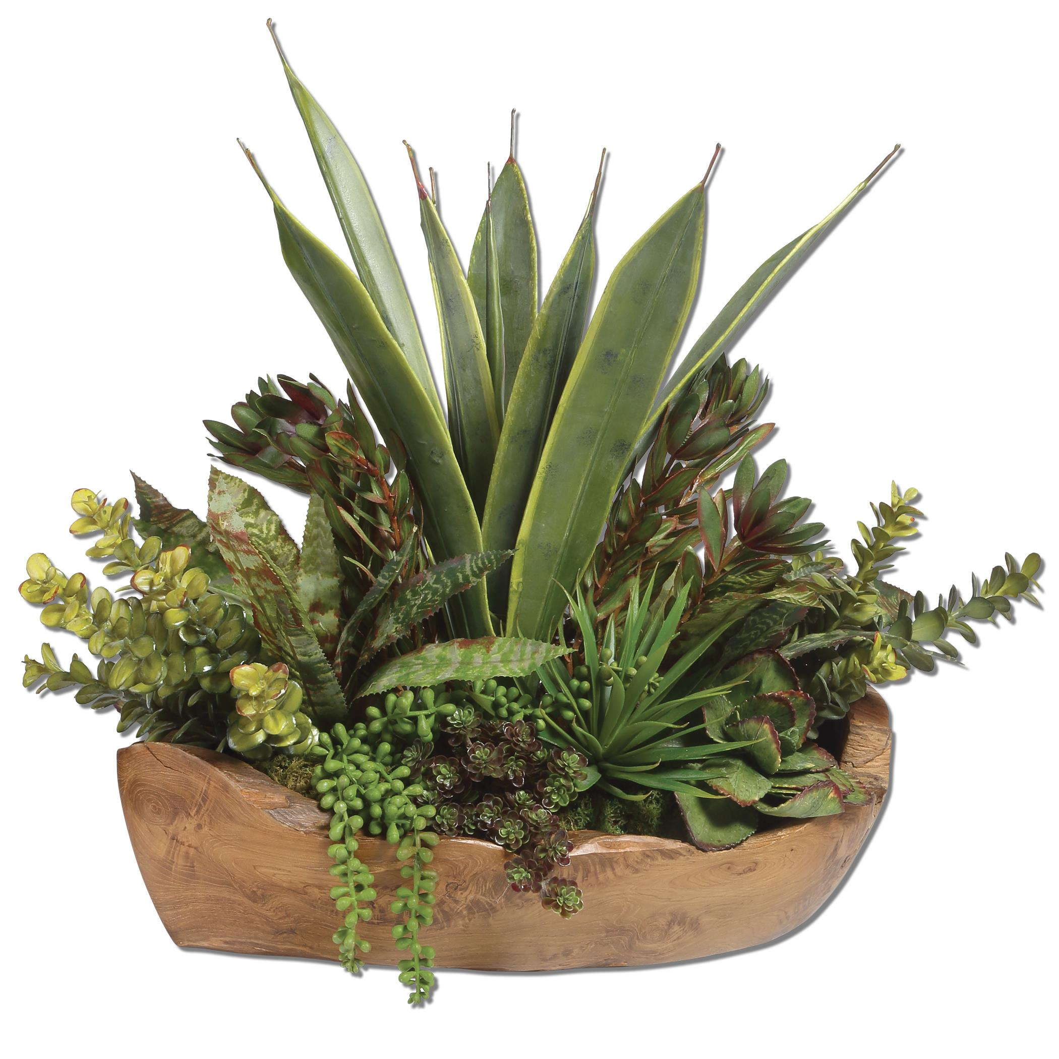 Uttermost Accessories Salar Succulents In Teak Bowl - Item Number: 60119
