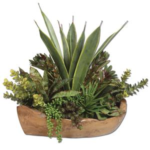 Uttermost Accessories Salar Succulents In Teak Bowl