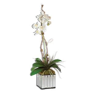 Uttermost Accessories White Kaleama Orchids