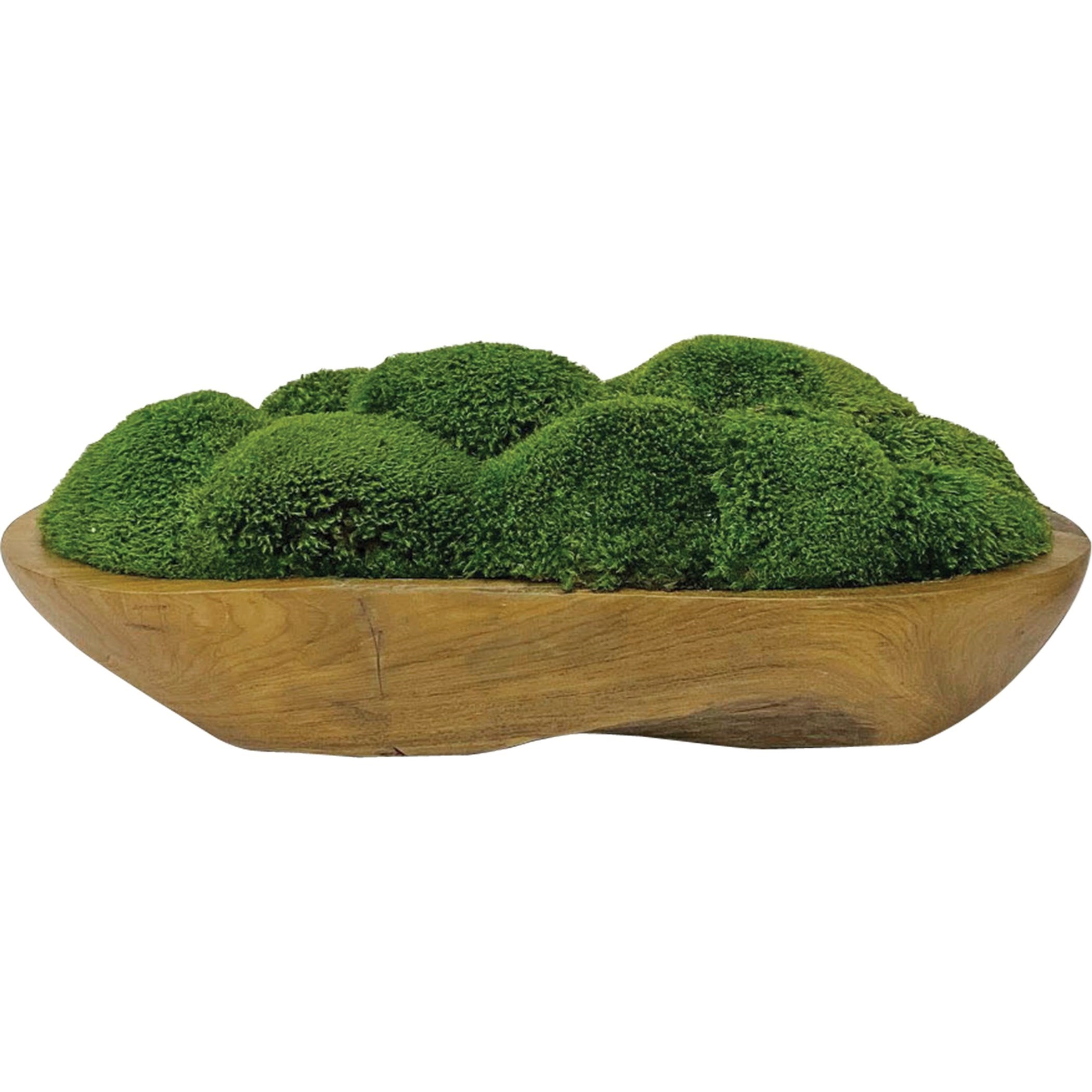 Accessories Kinsale Moss Centerpiece by Uttermost at Dunk & Bright Furniture