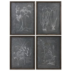Root Study (Set of 4)
