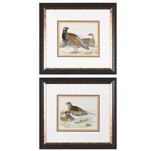 Uttermost Art Pair Of Quail Framed Prints, S/2
