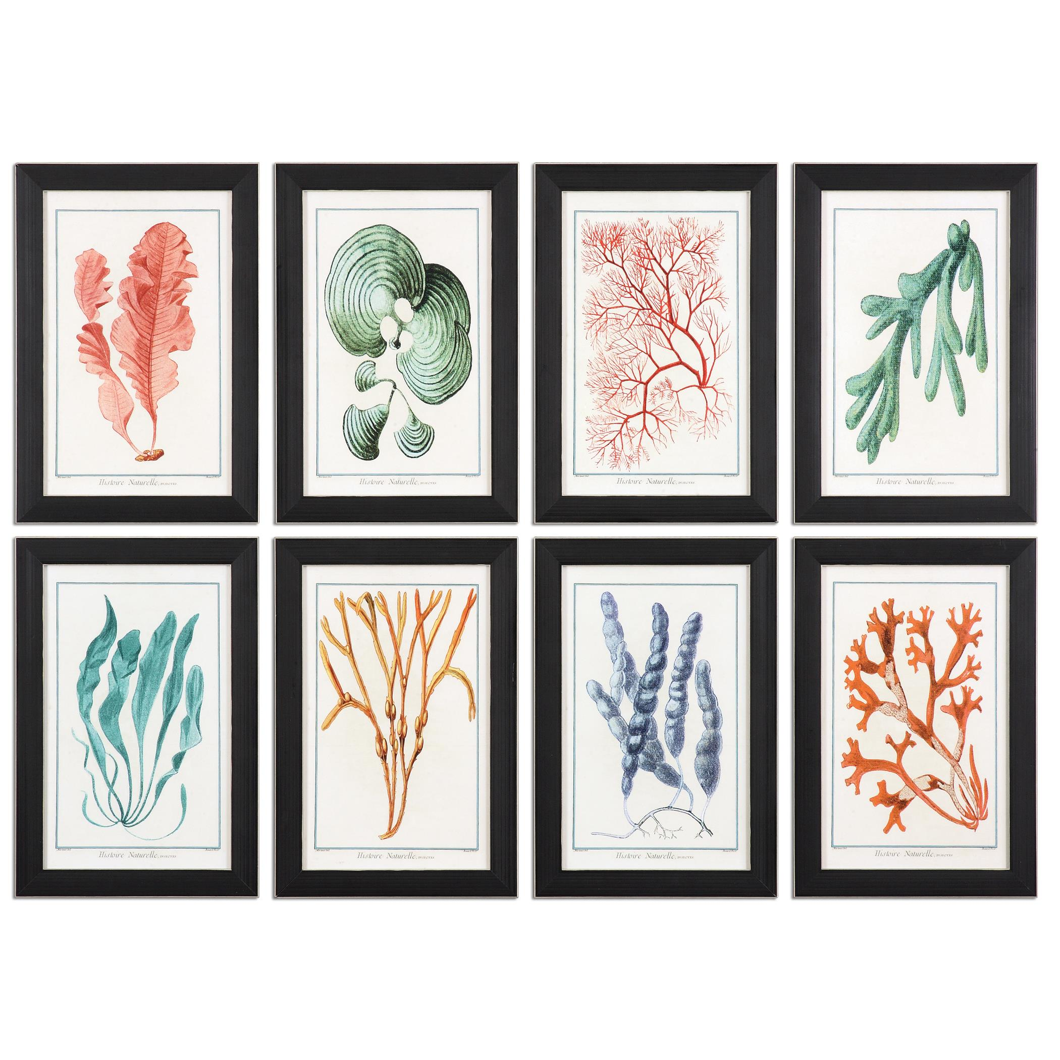 Uttermost Art Colorful Algae Framed Art, S/8 - Item Number: 33621