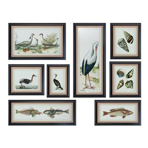 Uttermost Art Seashore Collage Prints, S/8