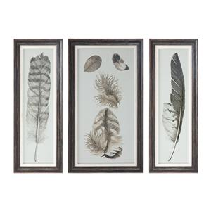 Uttermost Art Feather Study Prints, S/3