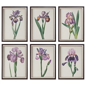 Uttermost Art Iris Beauties Floral Prints S/6
