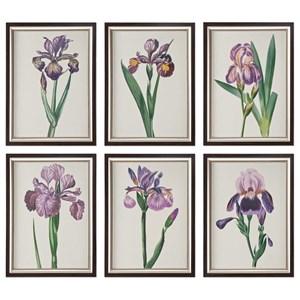 Uttermost Art Iris Beauties Floral Prints S/6