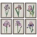 Uttermost Art Iris Beauties Floral Prints S/6 - Item Number: 33636