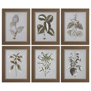 Uttermost Art Variegated Plants (Set of 6)