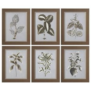 Uttermost Art Variegated Plants (Set of 6)