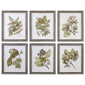 Uttermost Art Seedlings(Set of 6)