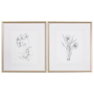Uttermost Art Botanical Sketches (Set of 2)