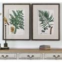 Uttermost Art Vintage Tropicals (Set of 2)