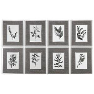 Uttermost Art Sepia Gray Leaves Prints (Set of 8)