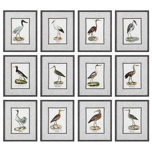 Uttermost Art Seashore Birds Prints (Set of 12)