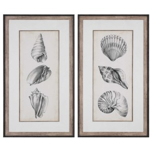 Uttermost Art Antique Shell Prints Set of 2