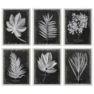 Uttermost Art Foliage Framed Prints, Set of 6