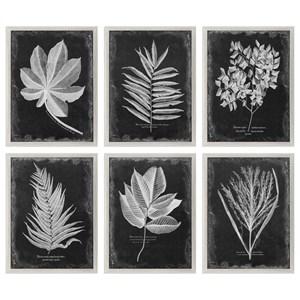 Uttermost Art Foliage Framed Prints, Set of 6