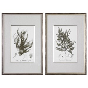Sepia Seaweed Prints