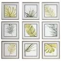 Uttermost Art Set of 9 Verdant Impressions Leaf Prints