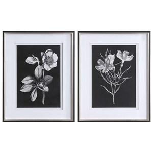 Black & White Flowers Framed Prints, Set/2