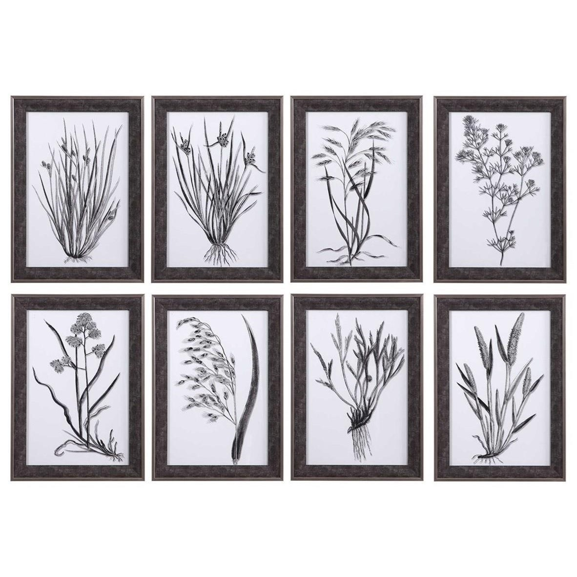 Classic Botany Framed Prints, Set/8