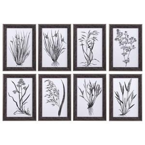 Classic Botany Framed Prints, Set/8
