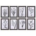 Uttermost Art Classic Botany Framed Prints, Set/8 - Item Number: 33696