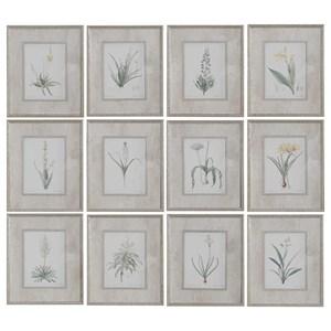 Spring Florals Framed Prints, Set/12
