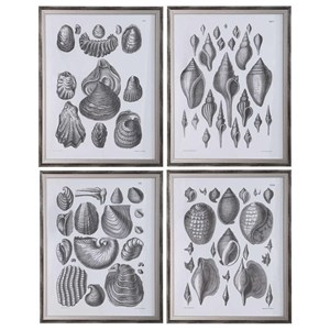Marine Study Framed Prints, Set/4