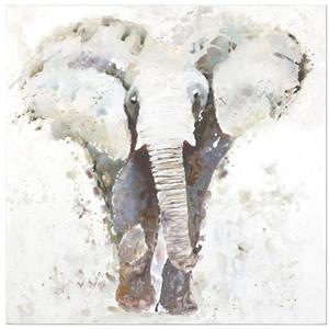 Uttermost Art Curiosity Hand Painted Elephant Art