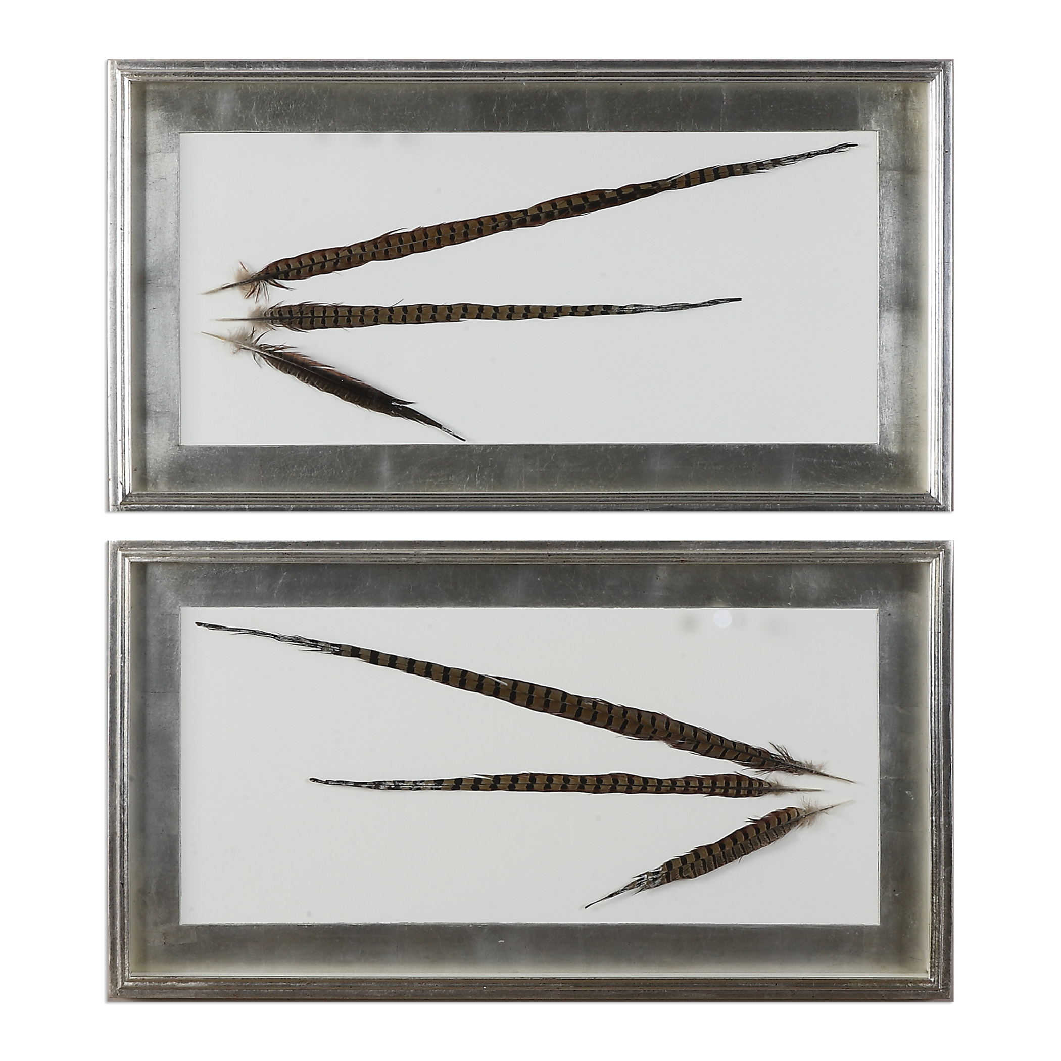 Uttermost Art Pheasant Feathers Wall Art S/2 - Item Number: 36201
