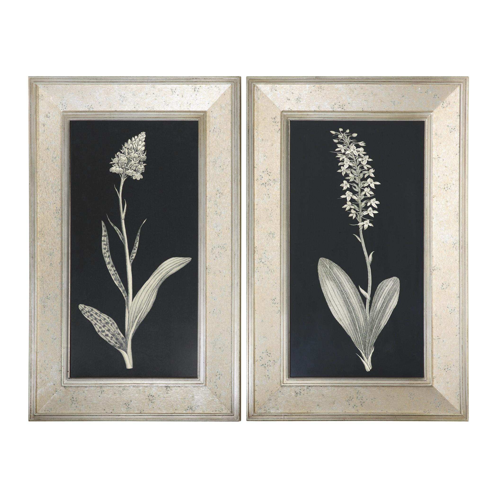 Uttermost Art Antique Floral Study Framed Art, Set of 2 - Item Number: 41529