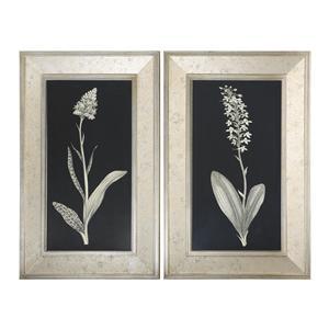 Uttermost Art Antique Floral Study Framed Art, Set of 2