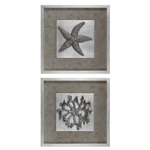 Uttermost Art Starfish & Coral Shadow Box Art, S/2